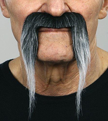 Gray Fu Manchu moustache