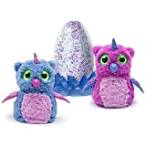 Hatchimals Owlicorn Pink/Blue Egg – One of Two Magical Creatures Inside