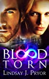 Blood Torn (Blackthorn Book 3) (English Edition)
