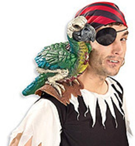 Parrot on My Shoulder Piece