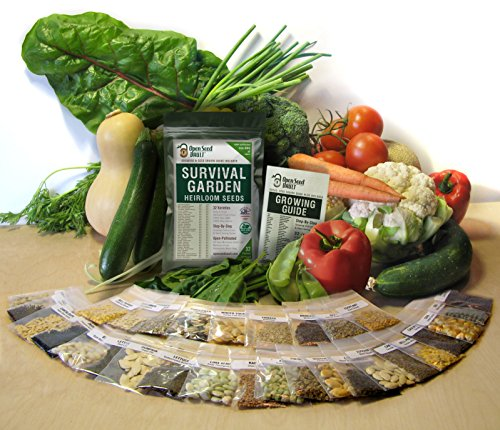 15000-Non-GMO-Heirloom-Vegetable-Seeds-Survival-Garden-32-Variety-Pack