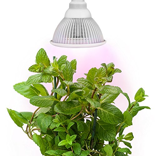 Sandalwood-LED-Plant-Grow-Light-for-Hydroponic-Garden-and-Greenhouse-12W-E27-Socket-3-Bands