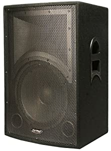 Patron Pro Audio PRO5000  Single 15 Inch Dj Speaker 5000 Watts Max Peak Momentary Power with 1.34 Dome Driver