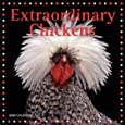 Extraordinary Chickens 2009 Wall Calendar
