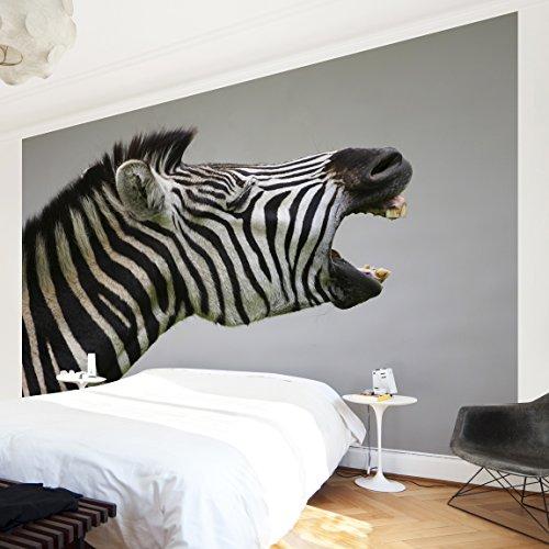 fotomurale-rawling-zebra-carta-da-parati-largo-fotomurali-fotomurale-tappezzeria-stoffa-da-parati-3d