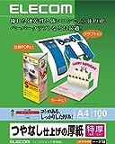 エレコム マット紙 特厚 A4サイズ 100枚入り ペーパークラフト/POPに最適 【日本製】EJK-STAA4100