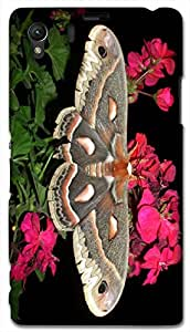 Timpax protective Armor Hard Bumper Back Case Cover. Multicolor printed on 3 Dimensional case with latest & finest graphic design art. Compatible with Sony L39H - Sony 39 Design No : TDZ-25488