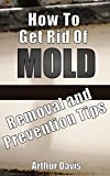 How To Get Rid Of Mold: Removal and Prevention Tips