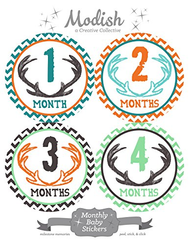 12 Monthly Baby Stickers, Deer Antlers, Boy, Baby Belly Stickers, Monthly Onesie Stickers, First Year Stickers Months 1-12, Chevron, Brown, Teal, Blue, Mint, Orange, Woodland, Baby Boy