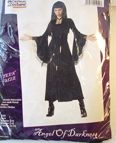 Angel of Darkness Costume Teen