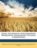 Ferns: Polypodium, Struthiopteris, Nevrodium, Hymenolepis, Vittaria, Ceratopteris (1144115906) by Lowe, Edward Joseph