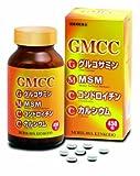 GMCC 450粒