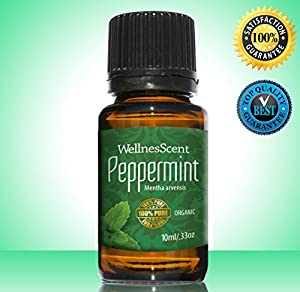Organic Peppermint Oil 100% Natural Pure Undiluted Premium Therapeutic Grade Essential Oils Used in Aromatherapy , Massage, Relaxation, Headache and Migraine Relief, Fights Off Dandruff and Protects Against Lice, Revitalizing, Refreshing, Cooling and Upli