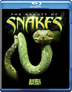 The Beauty of Snakes [Blu-ray]