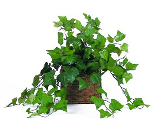 busch-dense-180-feuilles-60-cm-de-lierre-artificiel