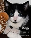 Stumpy: The Cat without a Tail