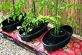 Botanico Grow Bag Watering Pots - Triple Pack