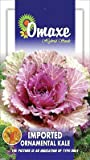 KALE ORNAMENTAL KALE WINTER FLOWER 50 SEEDS PACK BY OMAXE