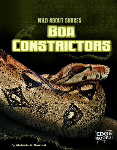 Boa Constrictors (Edge Books: Wild About Snakes)