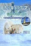 ホッキョクグマが教えてくれたこと ぼくの北極探検3000キロ (ポプラ社ノンフィクション)