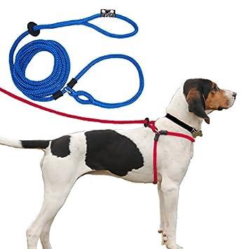 Dog leash harness combo