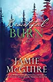 Beautiful Burn: A Novel (The Maddox Brothers Book 4)