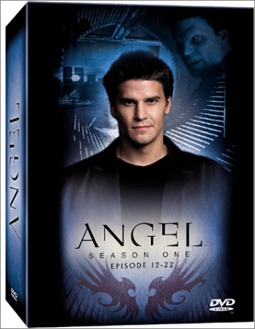 Angel - Jäger der Finsternis: Season 1.2 Collection (Episoden 12-22) [Box Set] [3 DVDs]