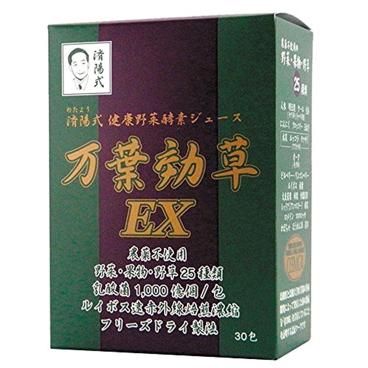 AIGM 건강 야채 효소 쥬스 잎 효초