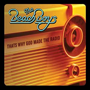That's Why God Made The Radio [LP]