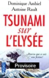 Tsunami sur l'Elyse : Pourvu que ce soit une fiction !
