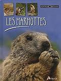 echange, troc Maurice Dupérat - Les marmottes