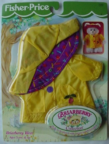 Fisher-Price BRIARBERRY TEDDY BEAR Raincoat &