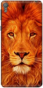 The Racoon Grip Face of the Lion hard plastic printed back case/cover for Sony Xperia E5