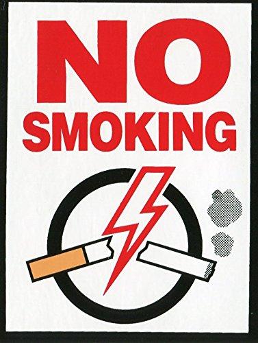 ドレスアップステッカー NO SMOKING 禁煙シール 店舗・カフェ・ホテルなどで