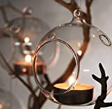 "3"" Hanging Glass Globe Ball Candle Holders, Plant Glass Terrariums 