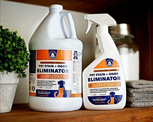 Extra strength pet odor eliminator permanent urine