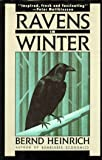 Ravens in Winter (0679732365) by Bernd Heinrich
