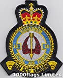 No 10 Squadron Royal Air Force RAF Embroidered Badge Patch