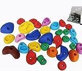 【Hilax】 【一年保証】カラフルホールド クライミングホールド ボルダリング 用 ボルト付きコンクリートアンカー付 32個セット 爪付きTナット32個 セット