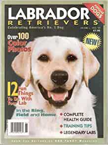 Labrador Retrievers (Volume 1, 1998-99): Various contributors, Lisa