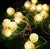 Authentic Modern Pine Cone 5M LED Nightlight Waterproof String Lamp Colorful Party Color Warm White 110V with US Plug
