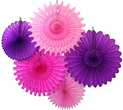 Tissue Paper Fan Collection - 5 Assorted Fans (Purple Pink Party) (Decorative Fan Pink compare prices)