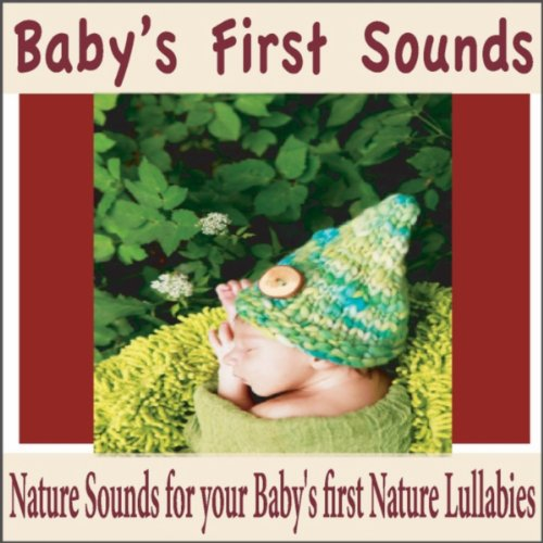 Baby First Sounds front-726930