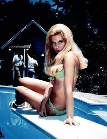 Meredith MacRae Leggy Bikini 8x10 Photo #P5674 at Amazon's