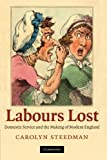 img - for Labours Lost: Domestic Service and the Making of Modern England book / textbook / text book