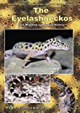 echange, troc Andreas Kirschner - The Eyelash Geckos, Care, Breeding and Natural History