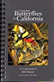 img - for Common Butterflies of California book / textbook / text book