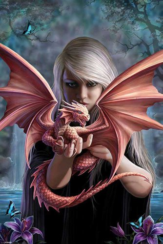 "Empire Merchandising GmbH - Poster ""Dragonkin"" di Anne Stokes con articolo supplementare multicolore"