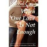 When One Love Is Not Enough (Law Firm Love)di Rachel Cray
