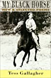 My Black Horse: New & Selected Poems (1852243066) by Gallagher, Tess